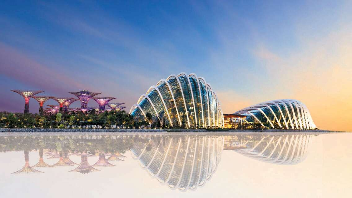 Gardens By The Bay Half Day Tour with Sing Swee Kee Chicken Rice Workshop