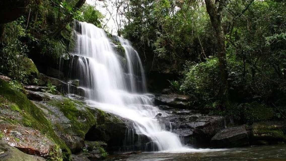 "Day tour to ""National Park Ybycuí"""