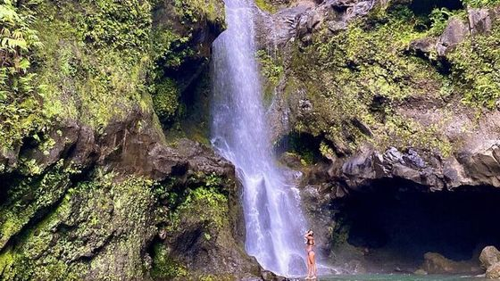 Epic Waterfall Adventure - Best of Maui