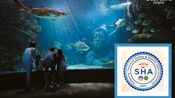 Sea Life Bangkok Ocean World + Madame Tussauds Ticket