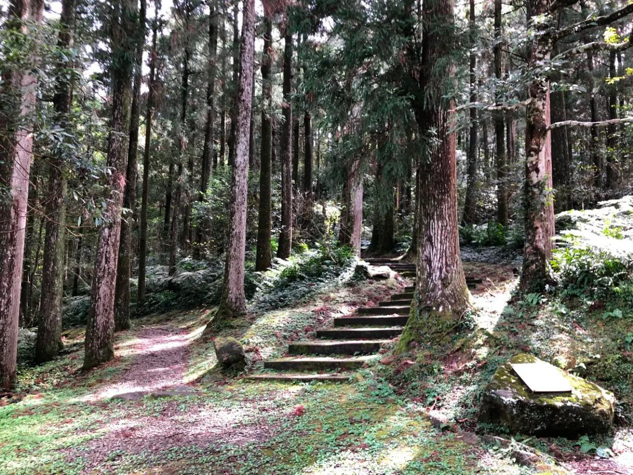 Taoyuan Dongyanshan Forest Recreation Area Ticket