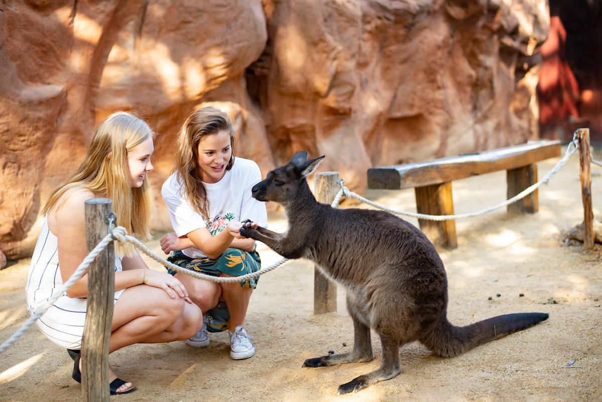 15% Off Promo Code | WILD LIFE Sydney Zoo Ticket