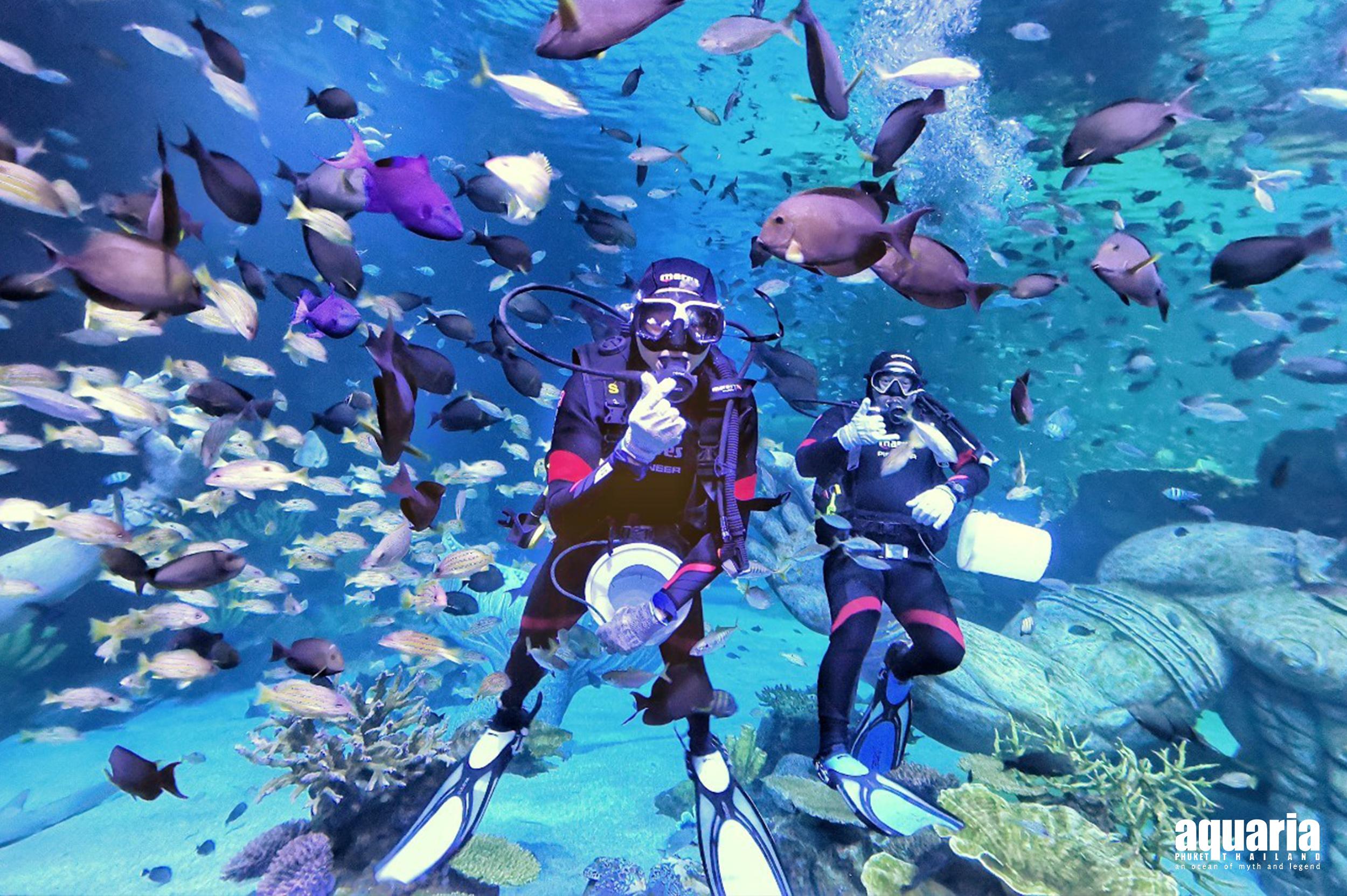Aquaria Phuket Ticket