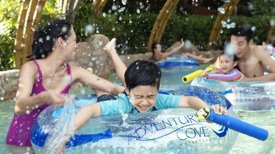 Adventure Cove Waterpark One-Day Ticket