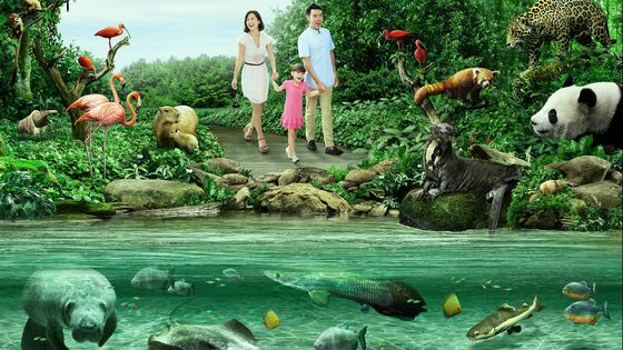 Singapore River Safari Admission Ticket (MUST RESERVE)