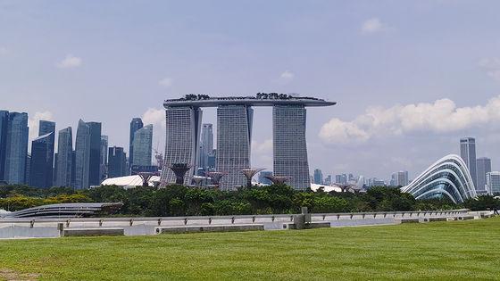싱가포르 일일투어