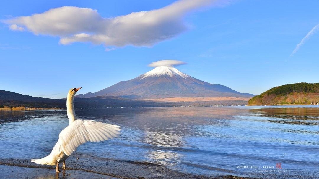 Mt Fuji Day Tour[Lake Kawaguchi,Oshino Hakkai,Gotemba Outlets]