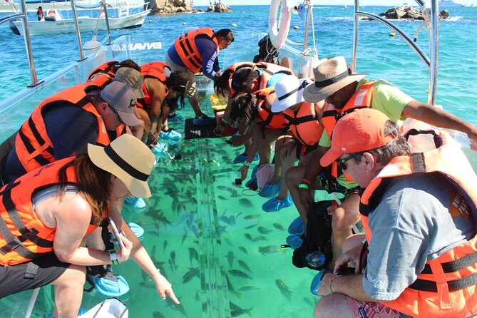 Clear Boat Ride with City Tour in Los Cabos