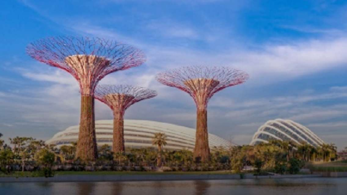 Half Day Gardens by the Bay & Singapore Flyer