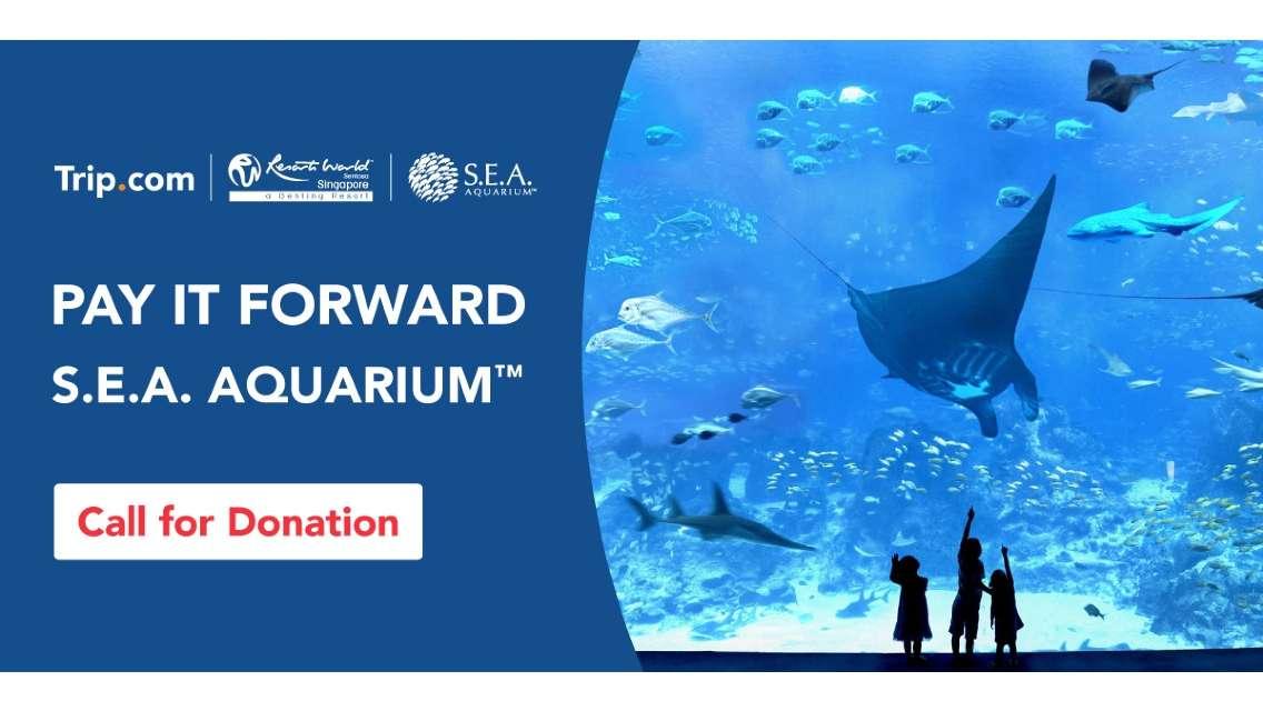 Pay It Forward | Life Community Services Society x S.E.A. Aquarium