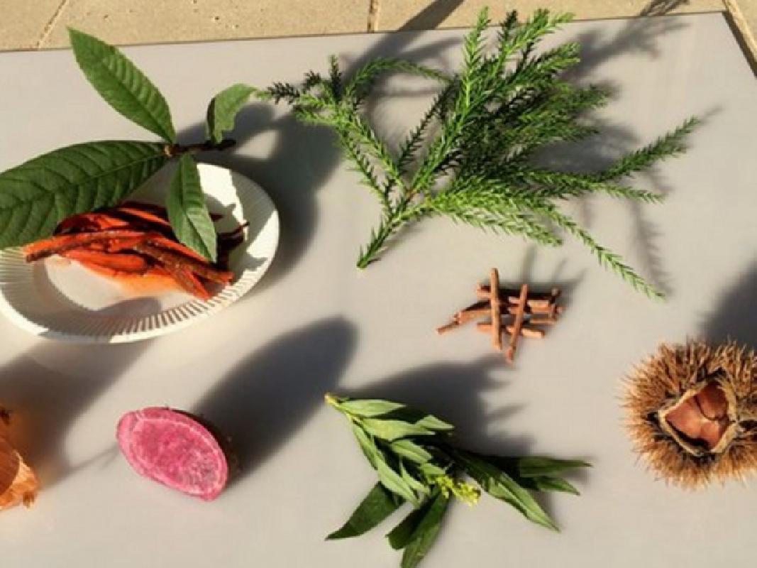 草木染体験 奈良 明日香の里でバンダナやストールを作る<明日香村>
