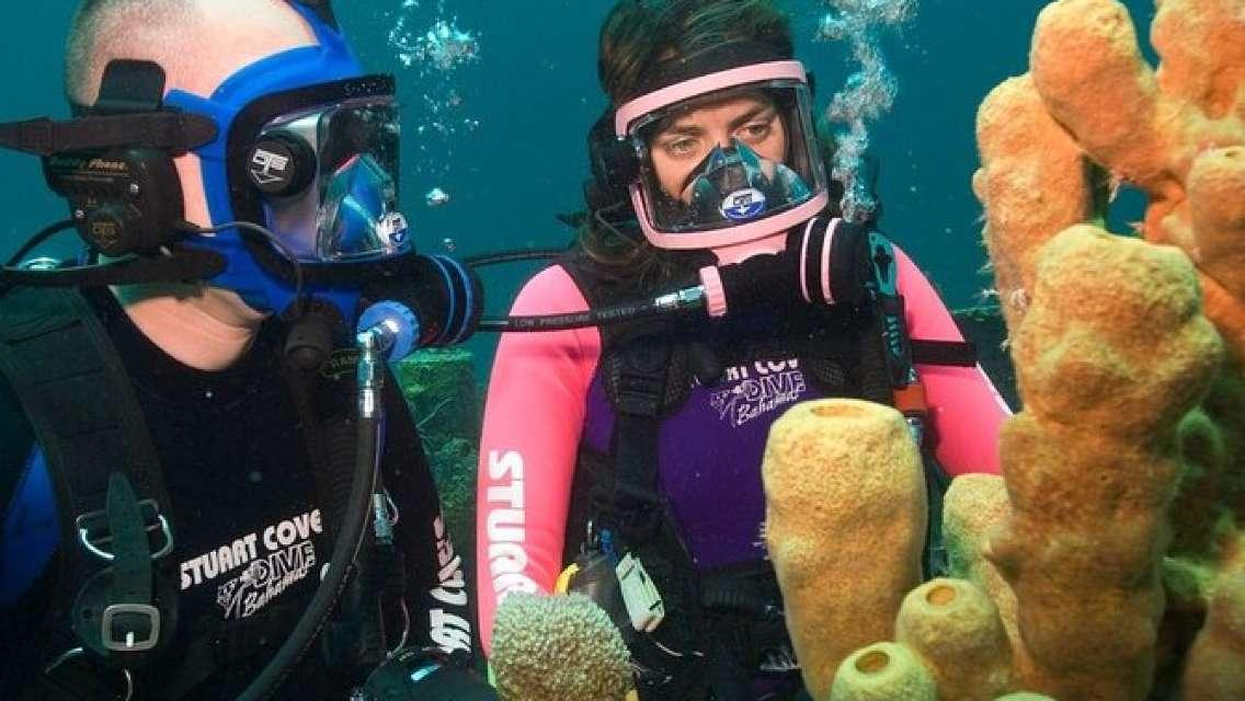Discover Scuba Diving Full Mask
