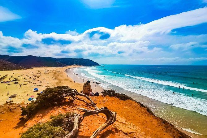 Wild and Wonderful West Coast Full Day Tour