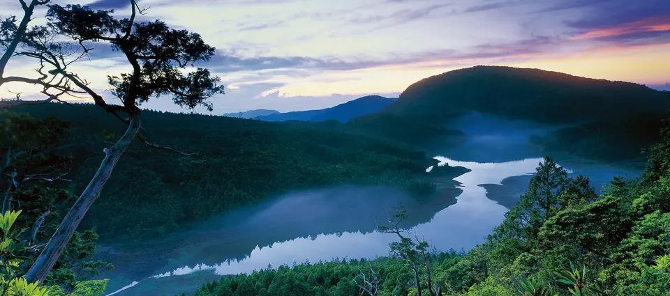 Taipingshan National Forest Recreation Area Ticket in Yilan