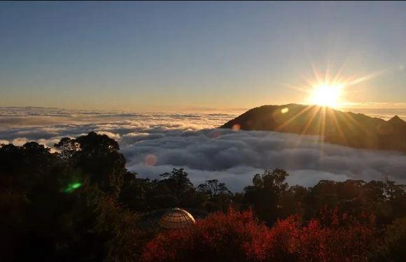 台中大雪山國家森林遊樂區門票