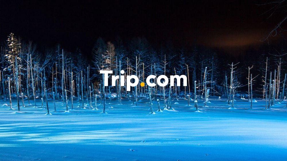 【札幌市内発】<プライベートツアー>冬も大人気の旭山動物園とロマンチックな美瑛青い池のライトアップ♪名店・松尾ジンギスカンのラム〈子羊〉食べ飲み放題付【Trip.com公式ツアー】
