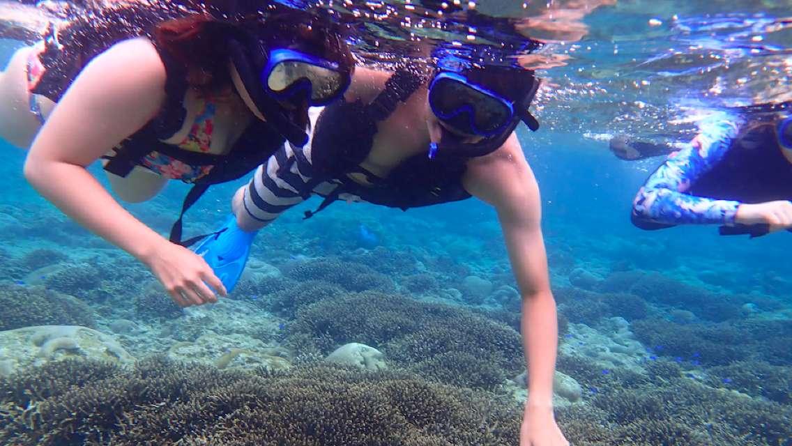 【半日】石垣島のド定番 「幻の島」浜島シュノーケリングのプラン