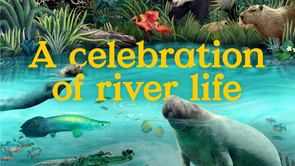 Singapore River Wonders Admission Ticket (MUST RESERVE)