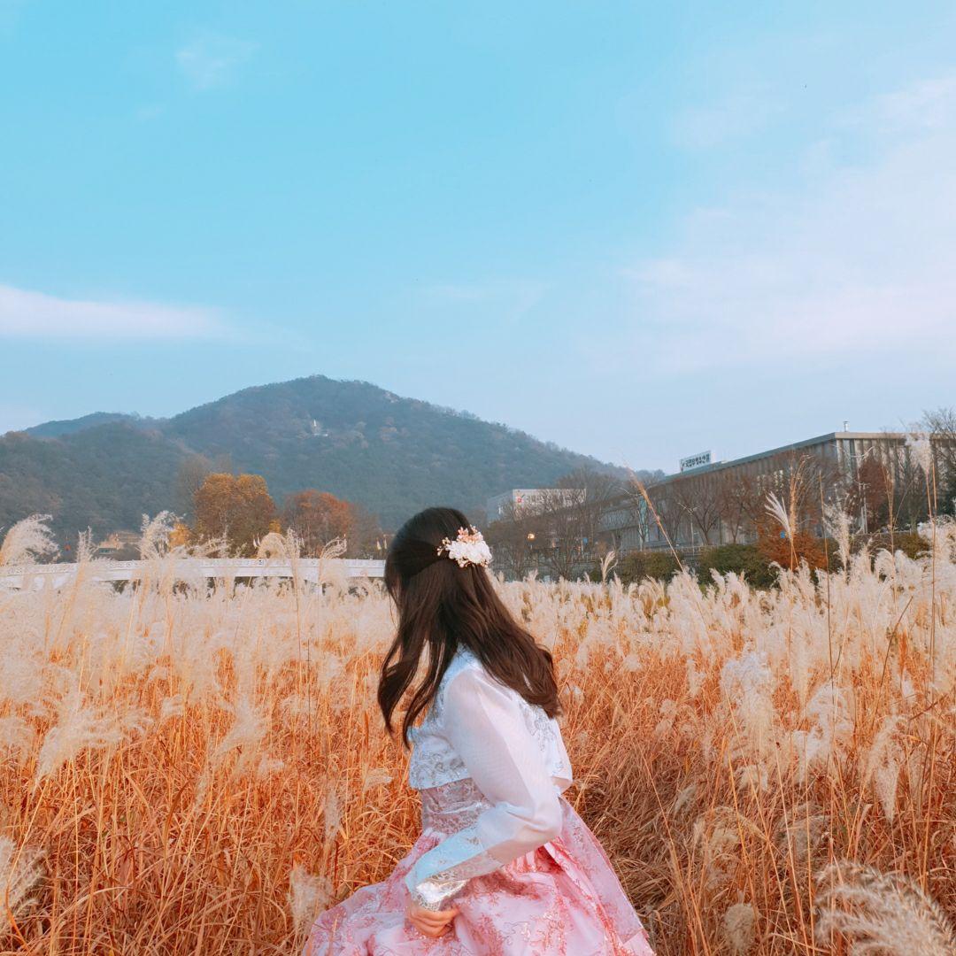 숩 Travel Diary