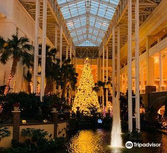 Opryland Hotel Gardens