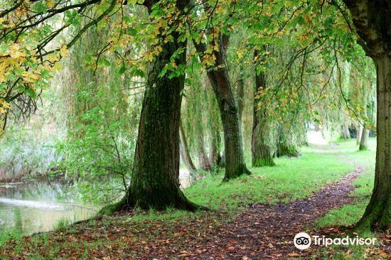 Winnall Moors Nature Reserve