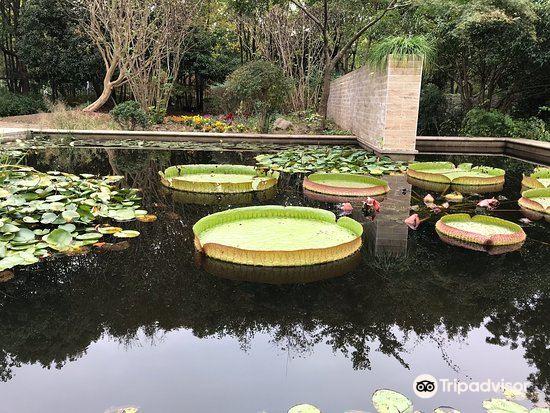 遠卉植物園
