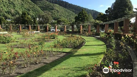 Lady Norwood Rose Garden