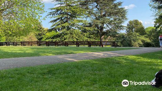 斯特裡塔姆公園