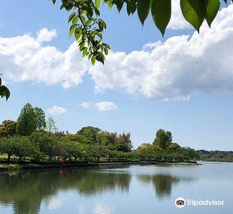 千波湖步行道
