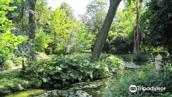 Schoonoord公園