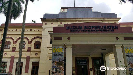 生物醫學博物館