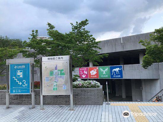 兵庫県立人と自然の博物館