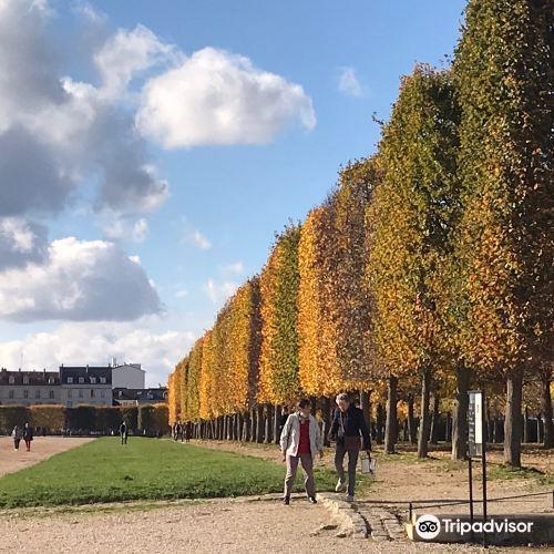 Parc du Château de Saint-Germain