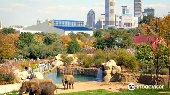 印弟安納波里斯動物園