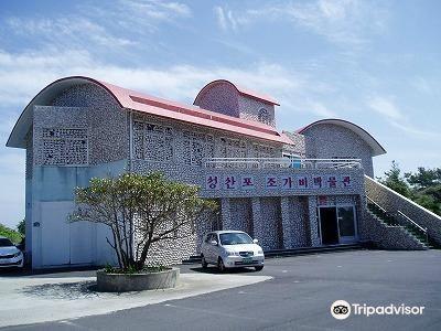 城山浦貝殼博物館