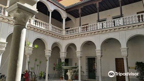 Palacio de Manara