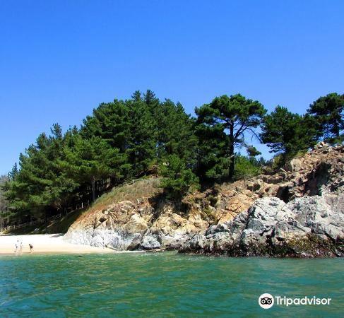 Playa de Dichato