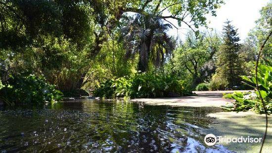 Rippon Lea House & Garden