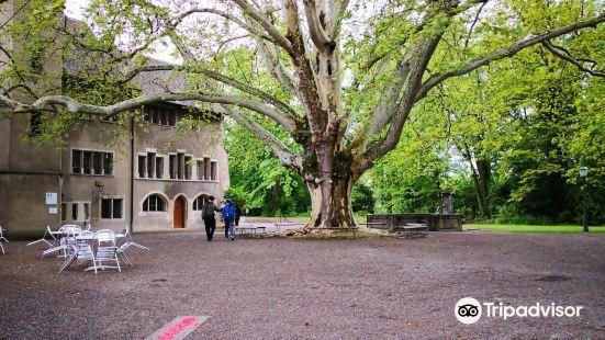 Kloster Konigsfelden