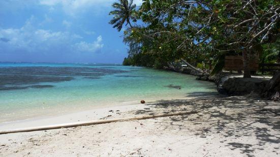 Opunohu Beach