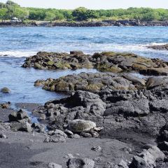 Punaluu Black Sand Beach 여행 사진
