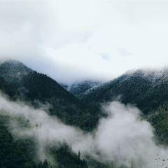 樂都南山用戶圖片