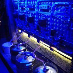 Rorbua Pub User Photo
