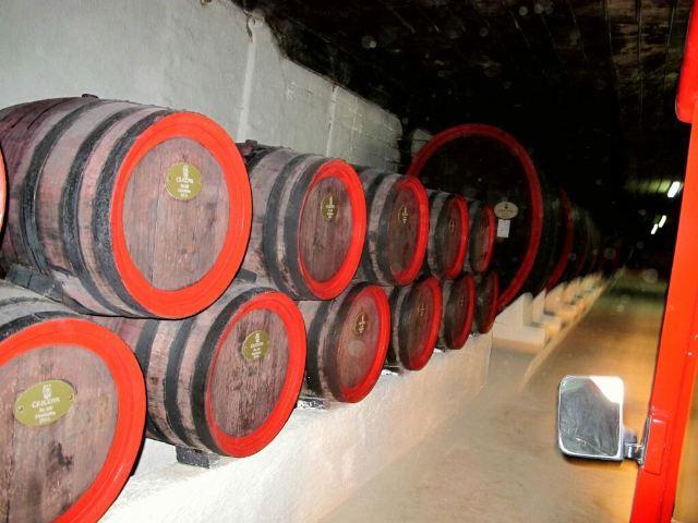 寇里科瓦地下酒窖