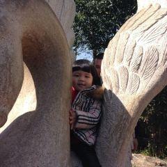 大澳村文化公園用戶圖片