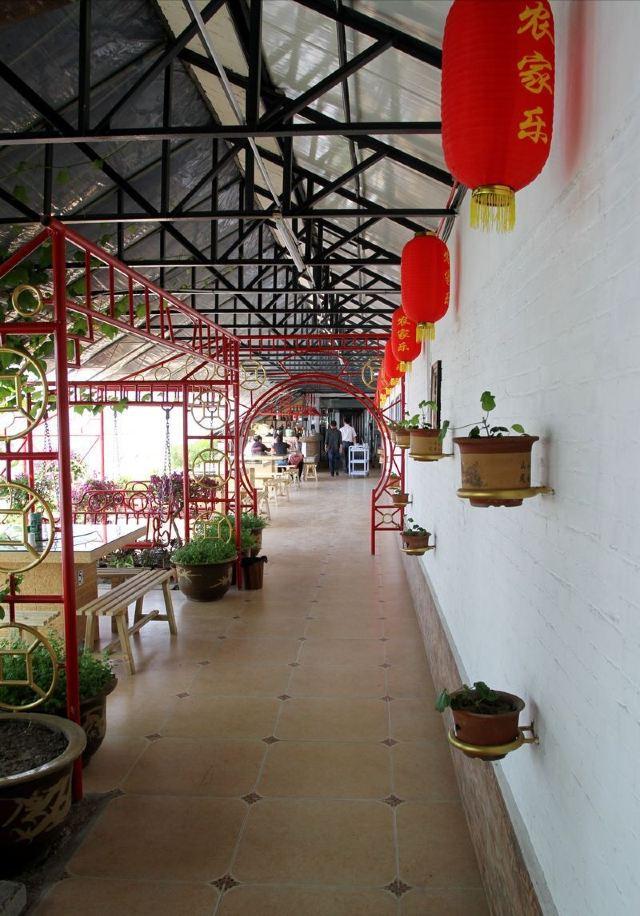 Tai Chi Island Wetland Park