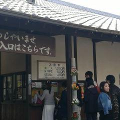 能古島海島公園用戶圖片