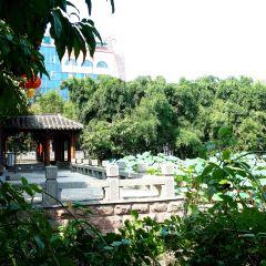 Zongzhaoyuan User Photo