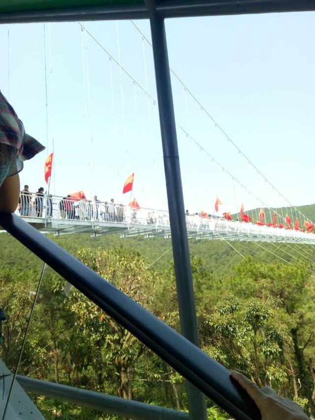 Gaoming Yingxiang Ecological Park