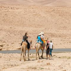 Incense Route - Desert Cities in the Negev User Photo